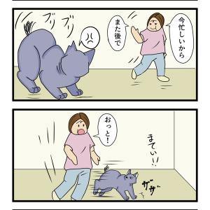 第35話 猫漫画 あずきの執念