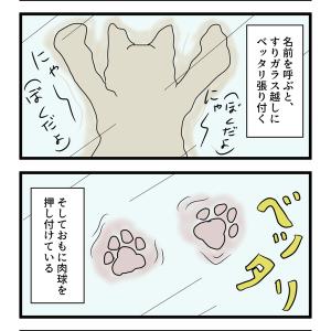 第39話 猫漫画 キュートな肉球