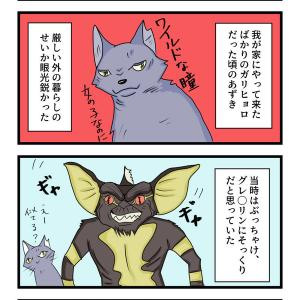 第40話 猫漫画 似てたのはグレムリン