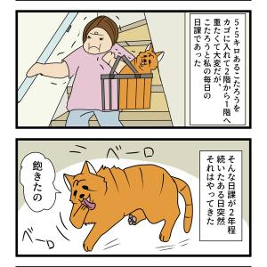 第50話 猫漫画 飽きられた