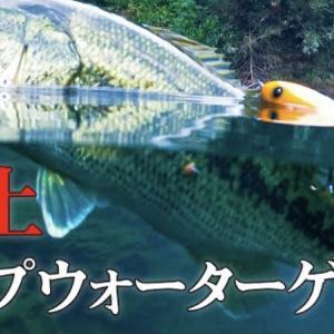 chest114【三瀬谷ダム】クリアウォーターでバイト連発!