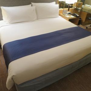 【宿泊記】ホリデイ・イン バンコク シーロム Holiday Inn Bangkok Silom