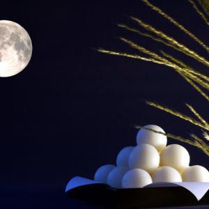 中秋の名月  The full moon in the middle autumnal month