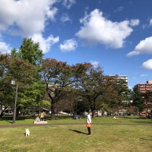 休日の西公園