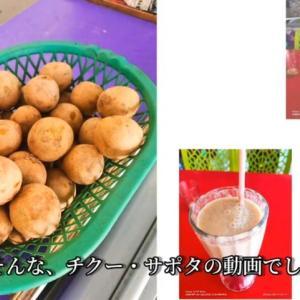 激甘果物チクーはチェンナイのジュース屋が美味かった