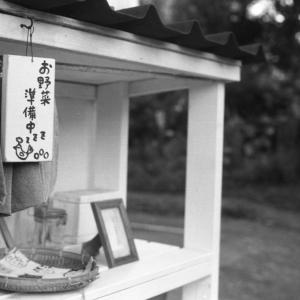 Photo No.460 / 引っ越し貧乏