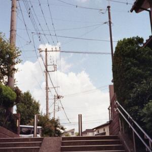 Photo No.461 / 階段の向こう