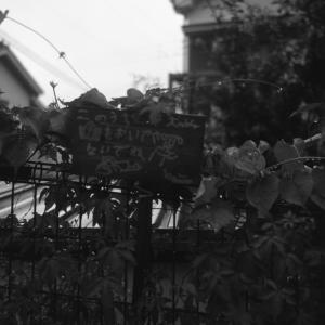 Photo No.468 / マナー