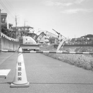 Photo No.478 / 肉、にく、ニク