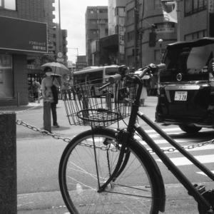 Photo No.479