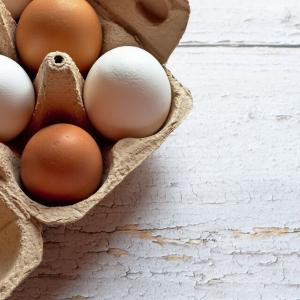 2021年4月*初めての採卵の結果は…