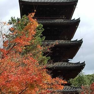 京都一人旅 12月