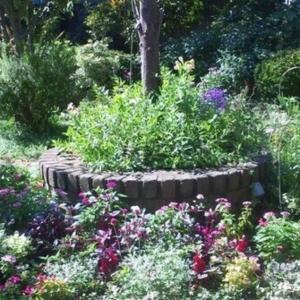 お庭の草花が心地よい場所で