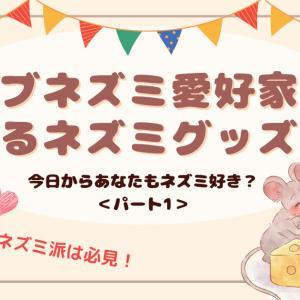 【面白】ドブネズミ愛好家が語るネズミグッズ紹介【初級編】