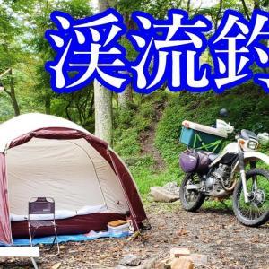 渓流釣りと秋ソロキャンプ(前編)~禁漁直前の渓流釣り~