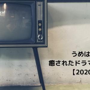 うめはな的癒されたドラマランキング【2020年】