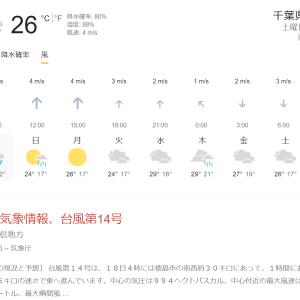 本降り。台風14号が来るぞー(2021年9月18日土)