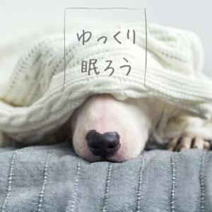 ゆっくり眠ろう 季節の変わり目に 寝れない夜の対処法5つ