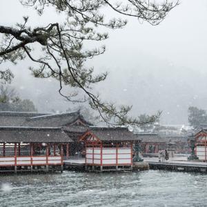 雪の中の宮島 厳島神社を撮ってきた