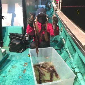 イカ釣り 積丹 釣果 2021.08.31