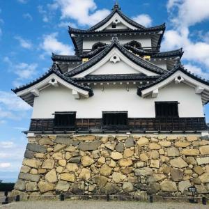 【彦根城】ひこにゃんだけじゃない!歴史を考えるお城 見どころや所要時間について紹介します
