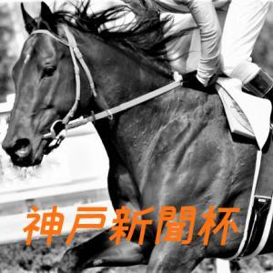 神戸新聞杯2021予想