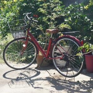 自転車を譲り受けました♪