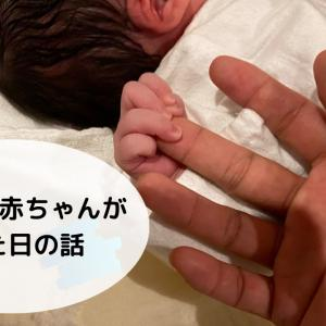 【立ち会い出産】5児の父になりました!【大家族日記】