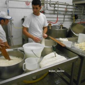 チーズ工房をパリで開業したい友人