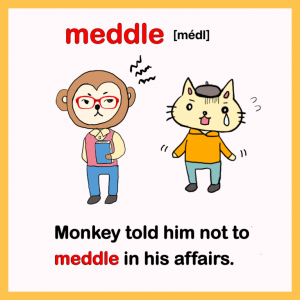 meddle-英検1級イラスト英単語