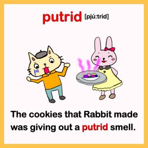 putrid-英検1級イラスト英単語