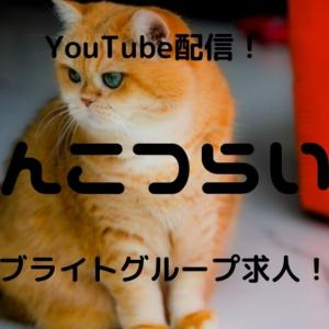 【ぽんこつらいぶ】ブライトグループ所属のチャットレディがYouTubuで情報発信!