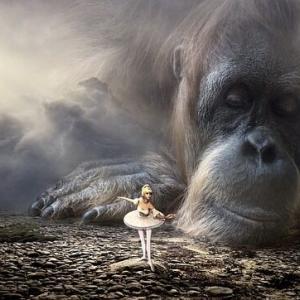 伝説の巨大類人猿はまだ生きていた!
