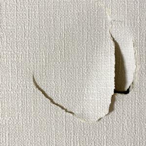 見て、見て!壁穴がロマンと現実