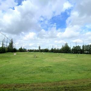 【シラチャ】ゴルフ打ちっぱなし練習場「Palm Springs Driving Range」に行ってみた!