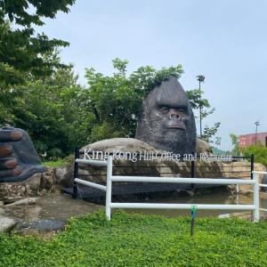 【シラチャ】山のカフェ「King Kong Hill Coffee」に行ってみた!