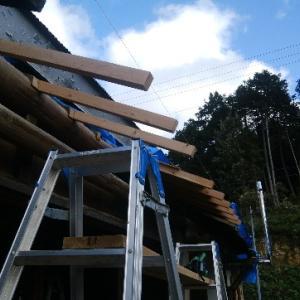 南側下屋根の垂木の設置 続き
