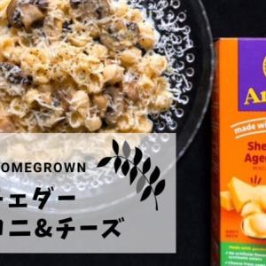 【アメリカのおふくろの味】アイハーブで買えるマカロニチーズが最高