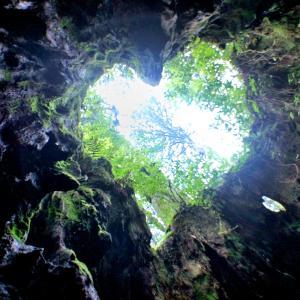 ⛰10月の屋久島 2010年訪問です!