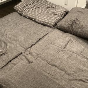【持たない暮らし】ベッドを手放して分かったメリット・デメリット