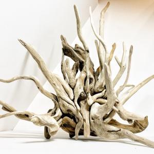 インテリアやエアプランツに使える枝の流木を大量出品。と至福の時