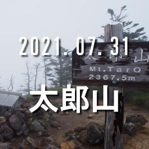 2021.07.31 太郎山 山王峠からピストン