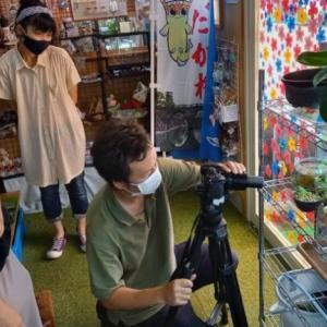 【めだか屋SUN/メダカ繁殖日記】「五島テレビさん」の撮影が開始されました
