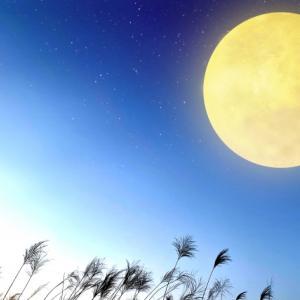 十五夜のお月見に読みたい絵本10選|季節を楽しむ子育て