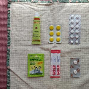 外出時、私を守ってくれる薬たち