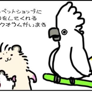 【夫婦4コマ】ボディランゲージ