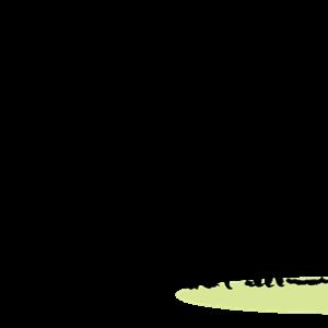 肘の反射区