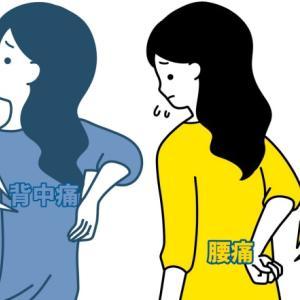 腰・背中の痛みが改善する反射区。