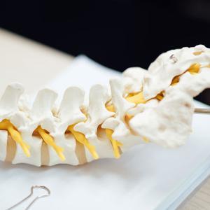 脊髄損傷により損傷レベル