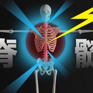 神経の機能が失われる脊髄ショックとは?